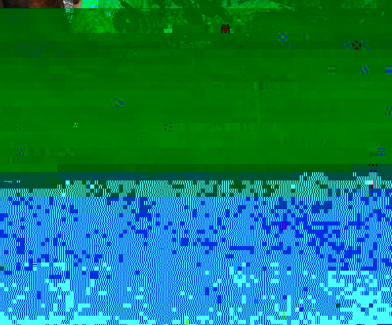 15.JPG.706e26f3afd6432e554eac11bb394b43.JPG