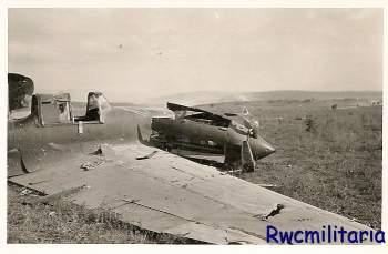 1942 (2-38-2).jpg